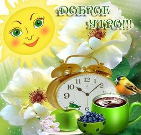 Красивая лучшая бесплатная открытка с поздравлением Доброе утро! Солнце Цветы Завтрак Другу! Скачать красивые картинки быстро можно здесь! скачать открытку бесплатно | pozdravok.qwestore.com