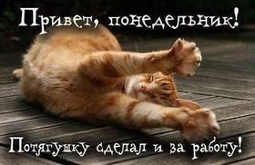 Красивая лучшая бесплатная открытка с поздравлением, лучшая бесплатная открытка с поздравлением ох, уж этот понедельник! Котик! Потягуши с утра! Красивая лучшая бесплатная открытка с поздравлением про понедельник! Хорошего понедельника! Скачать красивые картинки быстро можно здесь! скачать открытку бесплатно   pozdravok.qwestore.com