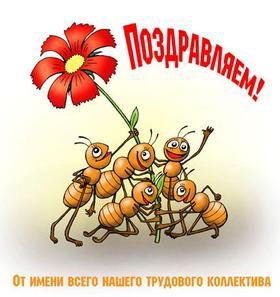 Прикольная красивая лучшая бесплатная открытка с поздравлением с трудовыми муравьями! Скачать красивые картинки быстро можно здесь! скачать открытку бесплатно | pozdravok.qwestore.com