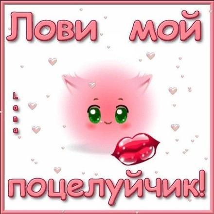 Красивая лучшая бесплатная открытка с поздравлением для любимого! Лови мой поцелуйчик! Скачать красивую картинку на праздник онлайн! скачать открытку бесплатно | pozdravok.qwestore.com