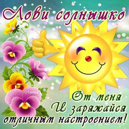 Красивая лучшая бесплатная открытка с поздравлением лови солнце от меня и заряжайся позитивом! Скачать красивую картинку на праздник онлайн! скачать открытку бесплатно   pozdravok.qwestore.com