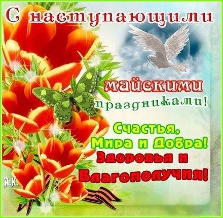 Красивая лучшая бесплатная открытка с поздравлением с наступающими майскими праздниками! Печать открытки! скачать открытку бесплатно   pozdravok.qwestore.com
