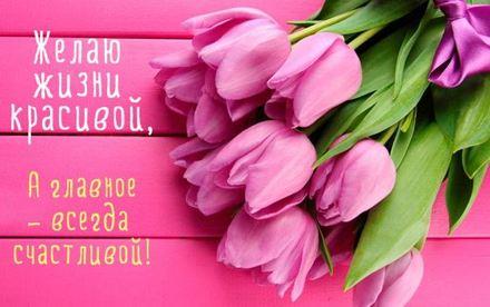 Розовая красивая лучшая бесплатная открытка с поздравлением на день рождения с тюльпанами. Скачать красивую открытку бесплатно онлайн! скачать открытку бесплатно | pozdravok.qwestore.com