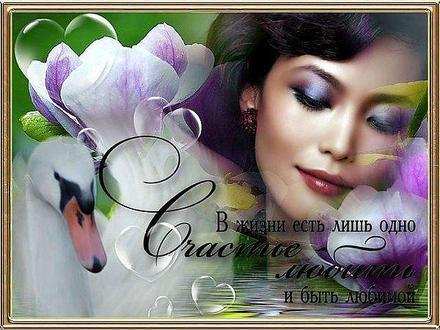 Красивая лучшая бесплатная открытка с поздравлением, лучшая бесплатная открытка с поздравлением, любовь, красивая лучшая бесплатная открытка с поздравлением про любовь, пожелание любви и счастья, фразы о любви, Love, счастье. Открытки  Красивая лучшая бесплатная открытка с поздравлением, лучшая бесплатная открытка с поздравлением, любовь, красивая лучшая бесплатная открытка с поздравлением про любовь, пожелание любви и счастья, фразы о любви, Love, счастье, цветы скачать бесплатно онлайн! Открытка добра! скачать открытку бесплатно | pozdravok.qwestore.com