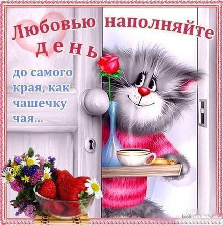 Красивая лучшая бесплатная открытка с поздравлением, лучшая бесплатная открытка с поздравлением, любовь, красивая лучшая бесплатная открытка с поздравлением про любовь, пожелание любви и счастья, фразы о любви, кот. Открытки  Красивая лучшая бесплатная открытка с поздравлением, лучшая бесплатная открытка с поздравлением, любовь, красивая лучшая бесплатная открытка с поздравлением про любовь, пожелание любви и счастья, фразы о любви, кот, цветы скачать бесплатно онлайн! Печать открытки! скачать открытку бесплатно   pozdravok.qwestore.com