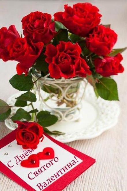 Красивая лучшая бесплатная открытка с поздравлением, лучшая бесплатная открытка с поздравлением, валентинка, красивая лучшая бесплатная открытка с поздравлением на день всех влюбленных, красивая лучшая бесплатная открытка с поздравлением на день святого валентина, красивая лучшая бесплатная открытка с поздравлением на 14 февраля, цветы. Открытки  Красивая лучшая бесплатная открытка с поздравлением, лучшая бесплатная открытка с поздравлением, валентинка, красивая лучшая бесплатная открытка с поздравлением на 14 февраля, поздравление на 14 февраля, красивая лучшая бесплатная открытка с поздравлением с днем святого валентина, красивая лучшая бесплатная открытка с поздравлением на день влюбленных, лучшая бесплатная открытка с поздравлением на день святого валентина, лучшая бесплатная открытка с поздравлением на день влюбленных скачать бесплатно онлайн! Распечатать открытку! скачать открытку бесплатно | pozdravok.qwestore.com