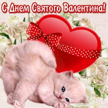Красивая лучшая бесплатная открытка с поздравлением, лучшая бесплатная открытка с поздравлением, валентинка, сердце, котенок. Открытки  Красивая лучшая бесплатная открытка с поздравлением, лучшая бесплатная открытка с поздравлением, валентинка, красивая лучшая бесплатная открытка с поздравлением на 14 февраля, поздравление на 14 февраля, красивая лучшая бесплатная открытка с поздравлением с днем святого валентина, красивая лучшая бесплатная открытка с поздравлением на день влюбленных, лучшая бесплатная открытка с поздравлением на день святого валентина, лучшая бесплатная открытка с поздравлением на день влюбленных скачать бесплатно онлайн! Печать открытки! скачать открытку бесплатно   pozdravok.qwestore.com