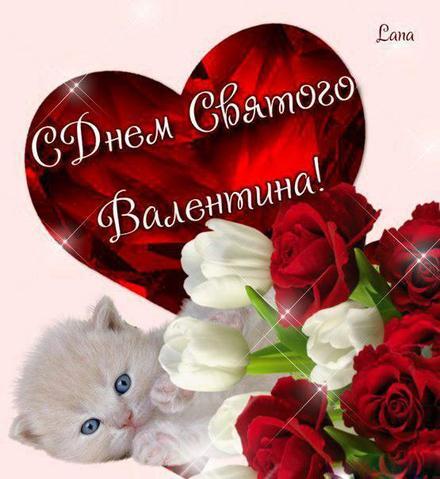 Красивая лучшая бесплатная открытка с поздравлением, лучшая бесплатная открытка с поздравлением, валентинка, красивая лучшая бесплатная открытка с поздравлением на день всех влюбленных, красивая лучшая бесплатная открытка с поздравлением на день святого валентина, котенок. Открытки  Красивая лучшая бесплатная открытка с поздравлением, лучшая бесплатная открытка с поздравлением, валентинка, красивая лучшая бесплатная открытка с поздравлением на 14 февраля, поздравление на 14 февраля, красивая лучшая бесплатная открытка с поздравлением с днем святого валентина, красивая лучшая бесплатная открытка с поздравлением на день влюбленных, лучшая бесплатная открытка с поздравлением на день святого валентина, лучшая бесплатная открытка с поздравлением на день влюбленных скачать бесплатно онлайн! Скачать красивые открытки бесплатно онлайн прямо сейчас! скачать открытку бесплатно   pozdravok.qwestore.com