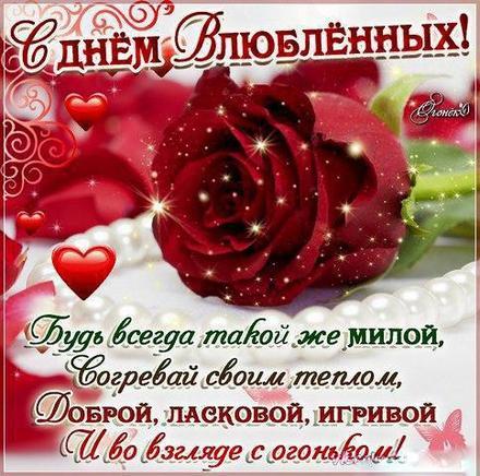 Красивая лучшая бесплатная открытка с поздравлением, лучшая бесплатная открытка с поздравлением, валентинка, красивая лучшая бесплатная открытка с поздравлением на день всех влюбленных, красивая лучшая бесплатная открытка с поздравлением на день святого валентина, красивая лучшая бесплатная открытка с поздравлением на 14 февраля, роза. Открытки  Красивая лучшая бесплатная открытка с поздравлением, лучшая бесплатная открытка с поздравлением, валентинка, красивая лучшая бесплатная открытка с поздравлением на 14 февраля, поздравление на 14 февраля, красивая лучшая бесплатная открытка с поздравлением с днем святого валентина, красивая лучшая бесплатная открытка с поздравлением на день влюбленных, лучшая бесплатная открытка с поздравлением на день святого валентина, лучшая бесплатная открытка с поздравлением на день влюбленных скачать бесплатно онлайн! Скачать красивые картинки быстро можно здесь! скачать открытку бесплатно | pozdravok.qwestore.com