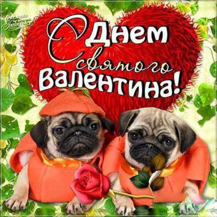 Красивая лучшая бесплатная открытка с поздравлением, лучшая бесплатная открытка с поздравлением, валентинка, красивая лучшая бесплатная открытка с поздравлением на день всех влюбленных, красивая лучшая бесплатная открытка с поздравлением на день святого валентина, мопсы. Открытки  Красивая лучшая бесплатная открытка с поздравлением, лучшая бесплатная открытка с поздравлением, валентинка, красивая лучшая бесплатная открытка с поздравлением на 14 февраля, поздравление на 14 февраля, красивая лучшая бесплатная открытка с поздравлением с днем святого валентина, красивая лучшая бесплатная открытка с поздравлением на день влюбленных, лучшая бесплатная открытка с поздравлением на день святого валентина, лучшая бесплатная открытка с поздравлением на день влюбленных скачать бесплатно онлайн! Скачать красивую картинку на праздник онлайн! скачать открытку бесплатно   pozdravok.qwestore.com