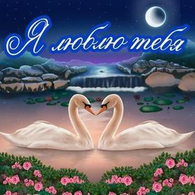 Красивая лучшая бесплатная открытка с поздравлением, лучшая бесплатная открытка с поздравлением, сердце, сердечко, красивая лучшая бесплатная открытка с поздравлением любовь, красивая лучшая бесплатная открытка с поздравлением с любовью, I love you, люблю тебя, Love, красивая лучшая бесплатная открытка с поздравлением с сердечками, красивая лучшая бесплатная открытка с поздравлением для любимой, красивая лучшая бесплатная открытка с поздравлением для любимого, лебеди. Открытки  Красивая лучшая бесплатная открытка с поздравлением, лучшая бесплатная открытка с поздравлением, сердце, сердечко, красивая лучшая бесплатная открытка с поздравлением любовь, красивая лучшая бесплатная открытка с поздравлением с любовью, I love you, люблю тебя, Love, красивая лучшая бесплатная открытка с поздравлением с сердечками, красивая лучшая бесплатная открытка с поздравлением для любимой, красивая лучшая бесплатная открытка с поздравлением для любимого, красивая лучшая бесплатная открытка с поздравлением признание в любви скачать бесплатно онлайн! Печать открытки! скачать открытку бесплатно | pozdravok.qwestore.com