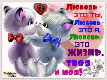 Красивая лучшая бесплатная открытка с поздравлением, любовь, признание в любви, люблю тебя, красивая лучшая бесплатная открытка с поздравлением любовь, для любимого, я люблю тебя, обожаю тебя, я влюблен в тебя, я очень люблю тебя, котята. Открытки  Красивая лучшая бесплатная открытка с поздравлением, любовь, признание в любви, люблю тебя, красивая лучшая бесплатная открытка с поздравлением любовь, для любимого, я люблю тебя, обожаю тебя, я влюблен в тебя, я очень люблю тебя, котята, любовь это жизнь скачать бесплатно онлайн! Открытка добра! скачать открытку бесплатно | pozdravok.qwestore.com