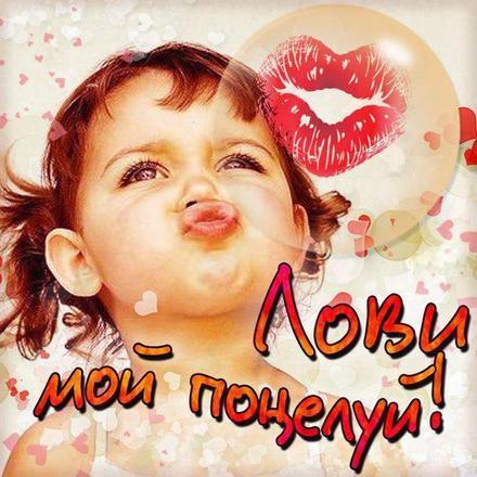 Красивая лучшая бесплатная открытка с поздравлением, лучшая бесплатная открытка с поздравлением, поцелуй, красивая лучшая бесплатная открытка с поздравлением поцелуй, целую, лови поцелуй. Открытки  Красивая лучшая бесплатная открытка с поздравлением, лучшая бесплатная открытка с поздравлением, поцелуй, красивая лучшая бесплатная открытка с поздравлением поцелуй, целую, лови поцелуй, малышка скачать бесплатно онлайн! Скачать красивые картинки быстро можно здесь! скачать открытку бесплатно | pozdravok.qwestore.com