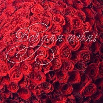 Красивая лучшая бесплатная открытка с поздравлением, лучшая бесплатная открытка с поздравлением, для тебя, красивая лучшая бесплатная открытка с поздравлением для тебя с любовью, тебе с любовью, красивая лучшая бесплатная открытка с поздравлением для любимого, красивая лучшая бесплатная открытка с поздравлением для любимой. Открытки  Красивая лучшая бесплатная открытка с поздравлением, лучшая бесплатная открытка с поздравлением, для тебя, красивая лучшая бесплатная открытка с поздравлением для тебя с любовью, тебе с любовью, красивая лучшая бесплатная открытка с поздравлением для любимого, красивая лучшая бесплатная открытка с поздравлением для любимой, красивая лучшая бесплатная открытка с поздравлением все для тебя скачать бесплатно онлайн! Красивые открытки бесплатно! скачать открытку бесплатно | pozdravok.qwestore.com