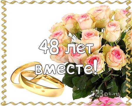 С годовщиной свадьбы 48 лет! Знойная, эмоциональная, элегантная бесплатная открытка с поздравлением, поздравительная картинка, плейкаст! Открытка добра! скачать открытку бесплатно   pozdravok.qwestore.com