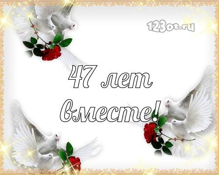 С годовщиной свадьбы 47 лет! Знойная, божественная, внимательная бесплатная открытка с поздравлением, поздравительная картинка, плейкаст! Открытка добра! скачать открытку бесплатно | pozdravok.qwestore.com