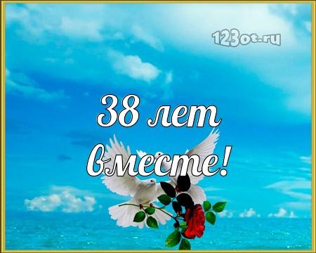 С годовщиной свадьбы 38 лет! Гениальная, крутая, лучезарная бесплатная открытка с поздравлением, поздравительная картинка, плейкаст! Скачать красивую картинку на праздник онлайн! скачать открытку бесплатно | pozdravok.qwestore.com